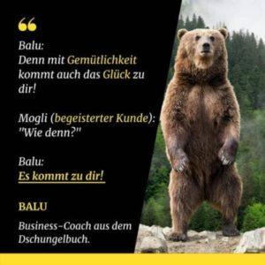 Die Contentbären von Burkhard Asmuth